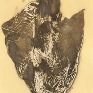 Alfred Arndt, ohne Titel, Lichtdruck, um 1966